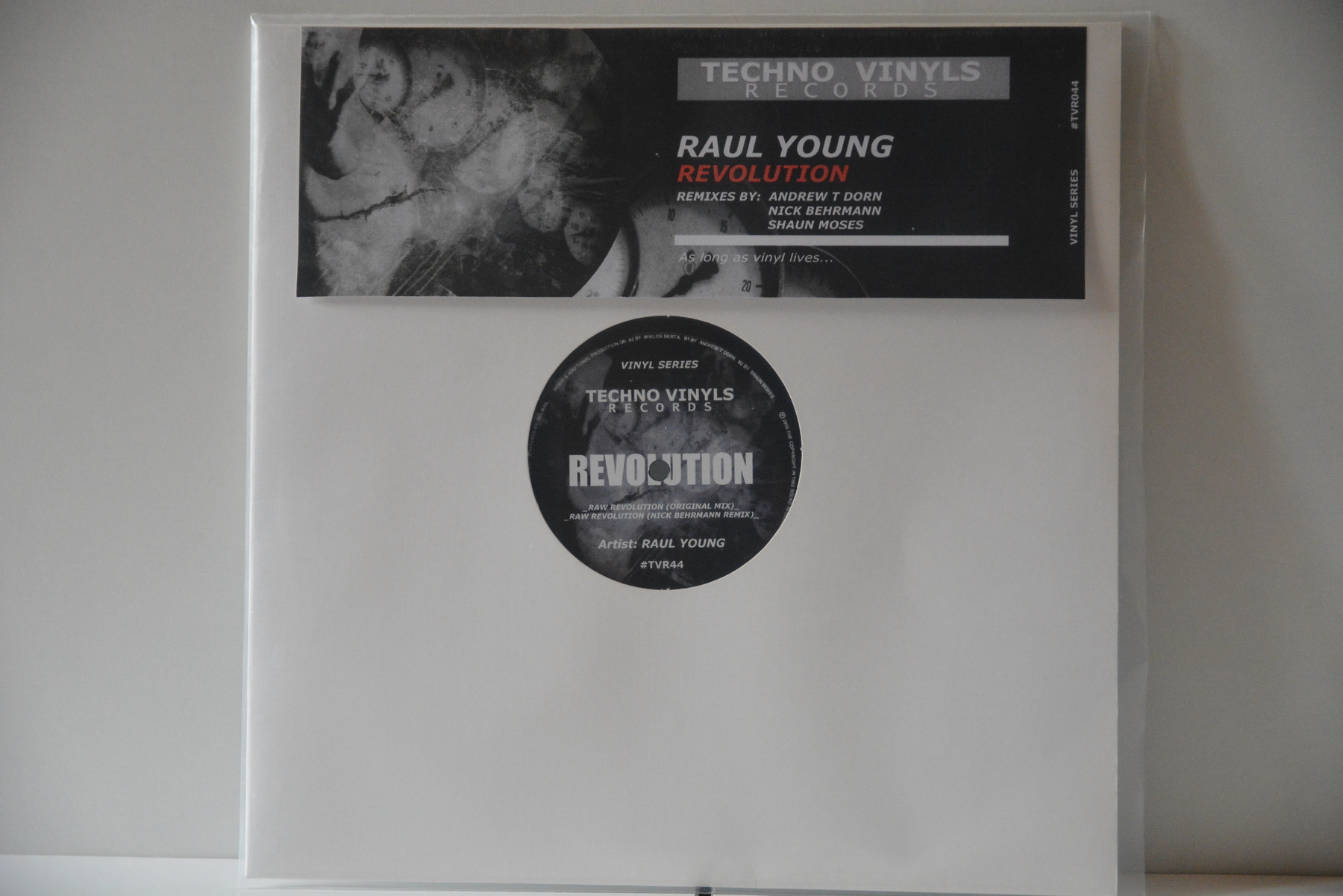 Raul Young – Revolution EP